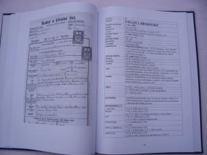 kronika8